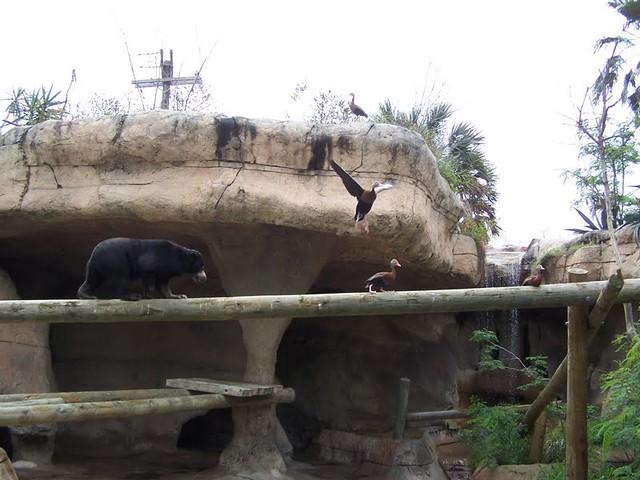 Brownsville Zoo, Brownsville, TX - 2010
