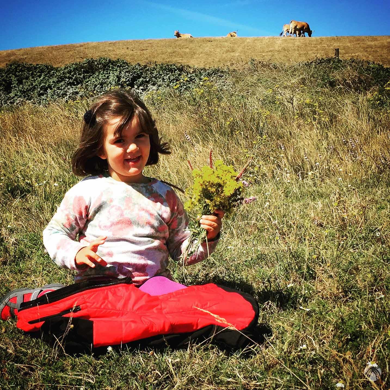 Recogiendo flores en el prado