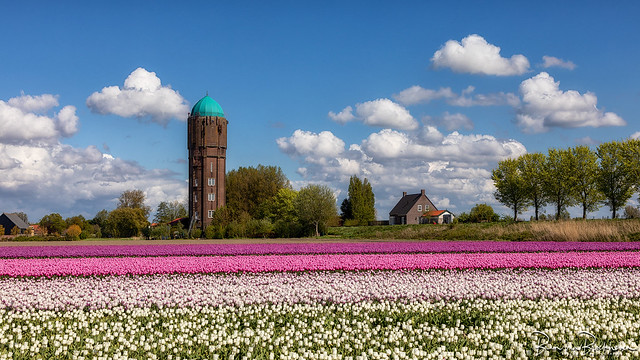 Former water tower Zuidzijde