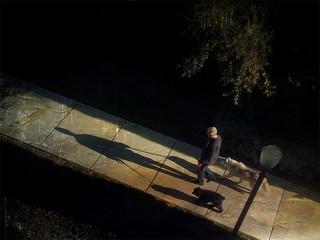 Sidewalk and Shadows