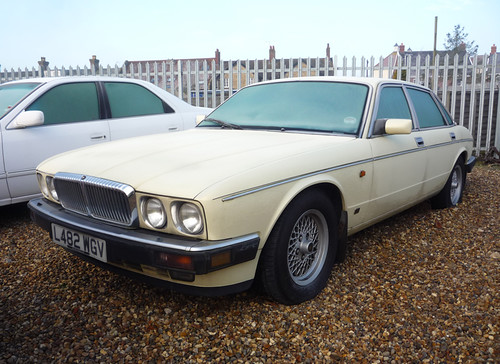 1993 Daimler Double Six Insignia   by Spottedlaurel