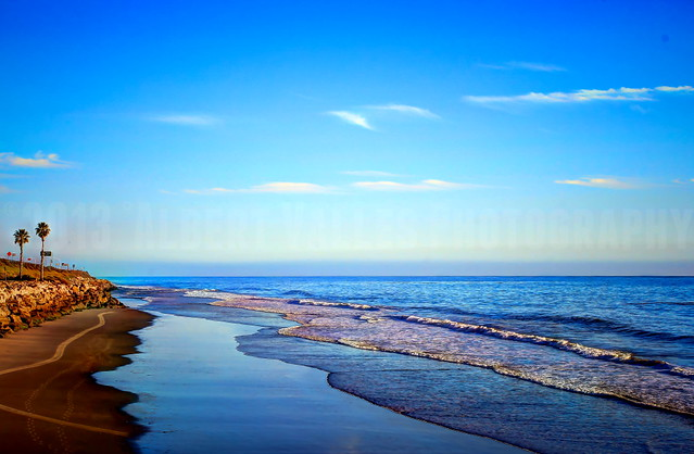 Pacific Coast Blue!