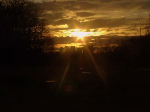 sony cybershot dschx1 rememberthatmomentlevel1 vigilantphotographersunite sunrisenorthyork backyardoftheapt sunrisespringtoronto