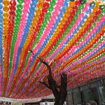 Les temples bouddhistes de Séoul