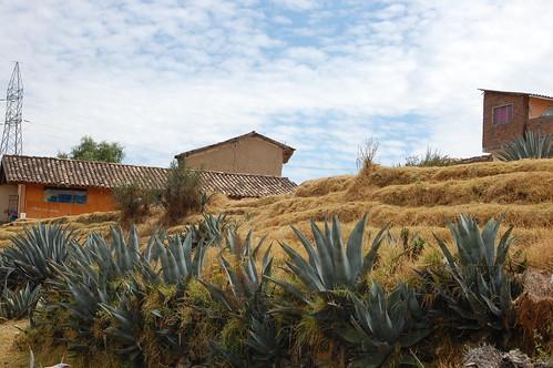 Huari and Wariwillca in Huancán, near Huancayo, Junín, Peru | by blueskylimit