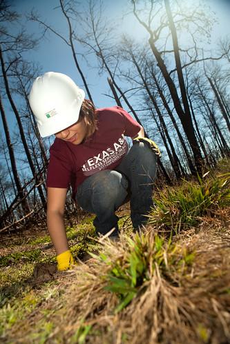 Agige pulling weeds - Replant Bastrop