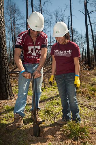 Aggie digging - Replant Bastrop