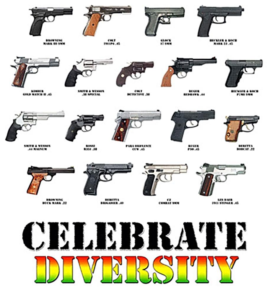 Image result for gun diversity