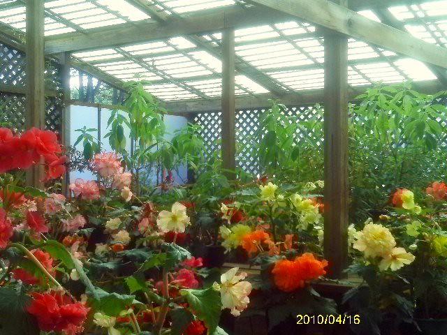 Fort Bragg Botanical Gardens, Oct. 2012