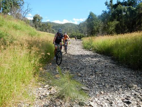 creek forest cycling state mtb cressbrook deongwar
