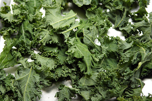 kale for kale chips | by David Lebovitz