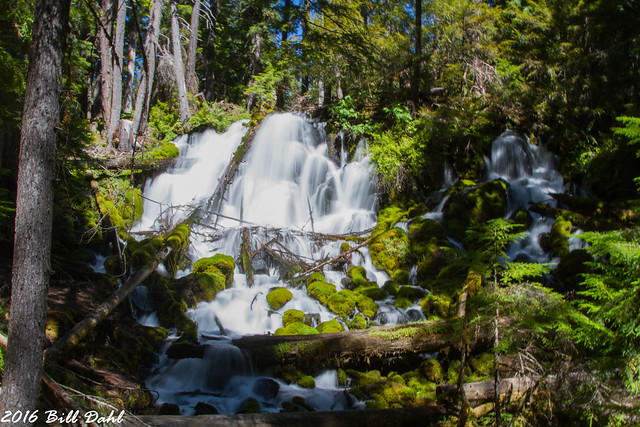Clearwater Falls 659