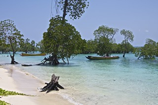 Neil island, Andaman and Nicobar Islands, India....close to the jetty | by New Delhices