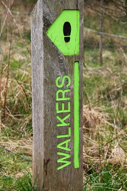 IMG_8793 Walkers N