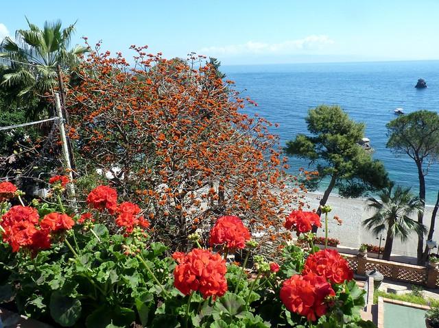 Taormina - I fiori di Mazzarò