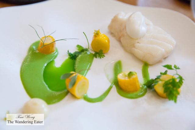 Cod, zucchini, sweet clover paired with Alain Gras Saint-Romain Blanc, Côte de Beaune