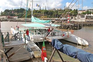 Sea the Best Catamaran