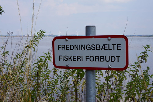 Stige-Oe-Oestudsigt-2014-07-27 (2)