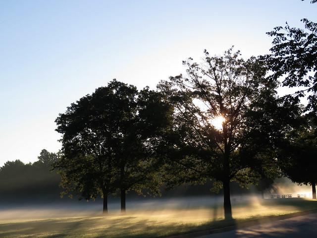 Even through the fog, your dreams can shine through