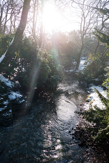 Winter 2013 (Jesmond Dene)  (17) | by Howard.