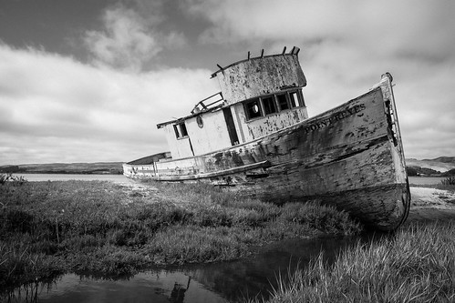 Point Reyes Shipwreck | by tehgipster