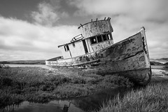 Photograph: Point Reyes Shipwreck