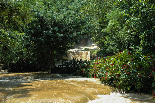 river waterfall jamaica ysfalls