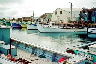 Malpeque, Prince Edward Island, Canada - NK1845