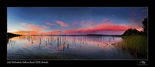 moon lake beach birds canon australia full swans nsw culburra sunrie 5dmkii wollumboola widife