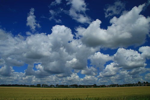 blue sky white field yellow clouds landscape outdoors horizon sunny daytime