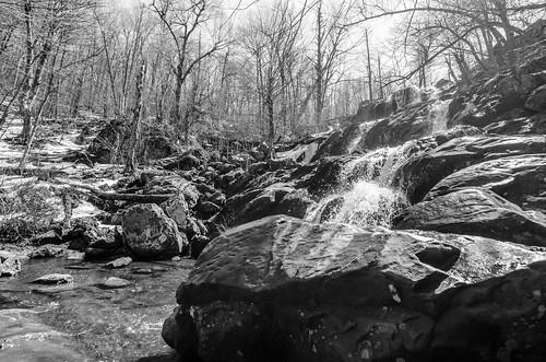 Dark Hollow Falls - B&W | by m01229