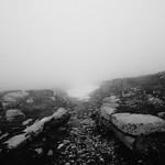 Rocks Leading To Snow In Fog