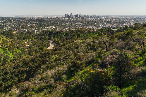 travel landscape california hollywood losangeles city hannator