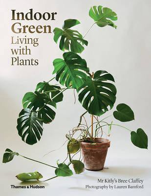 Indoor Green: Living with Plants DOWNLOAD PDF/ePUB [Bree C