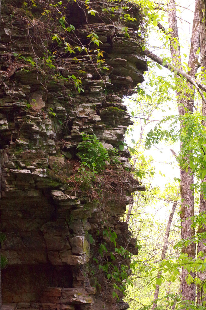 PK_30985 | Bridal Veil Falls - Heber Springs, AR | CJ Gann ...