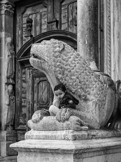 Nelle fauci del predatore   by Riccardo Palazzani - Italy