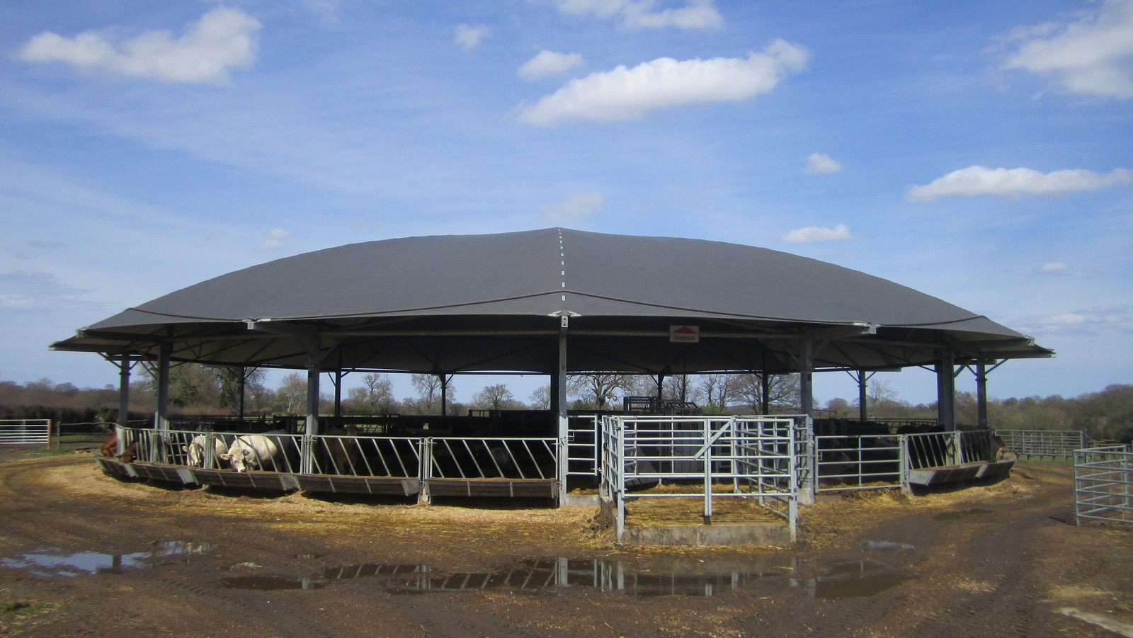 Circular Cattle Shelter