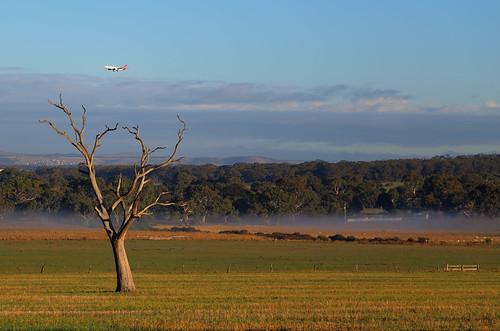 fog australia melbourne lonetree greenvale somertonroad