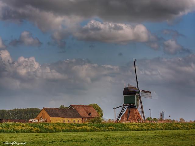 thinking of Holland