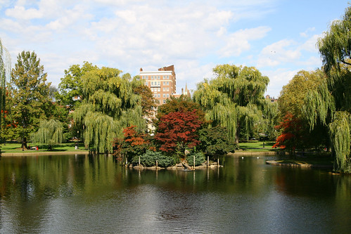 Boston Commons | by CJ Sugg