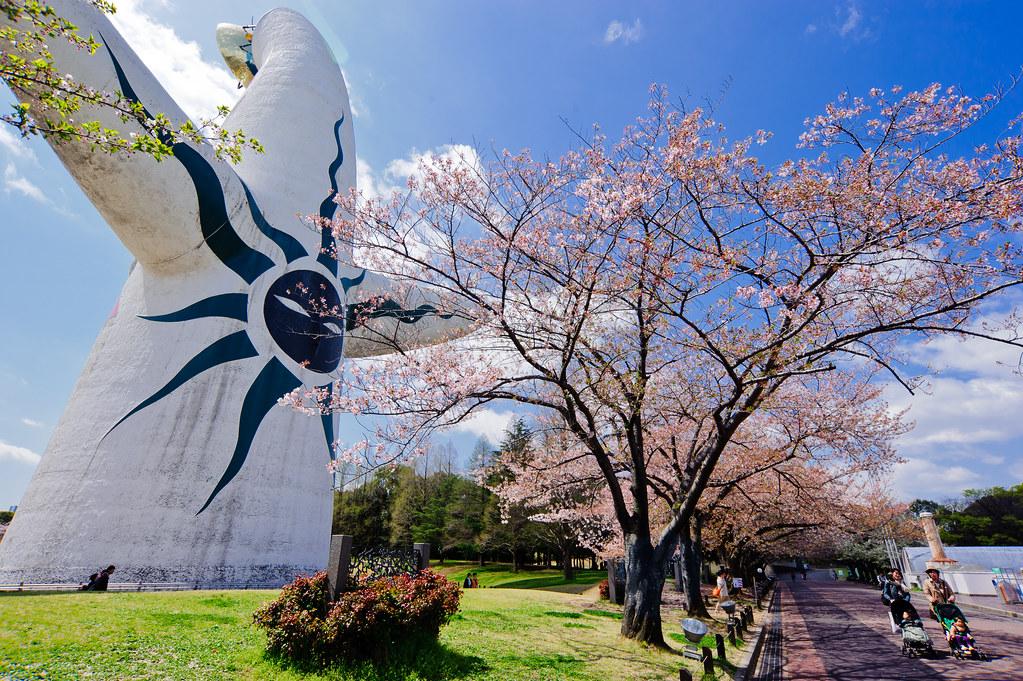 「大阪萬博紀念公園」的圖片搜尋結果