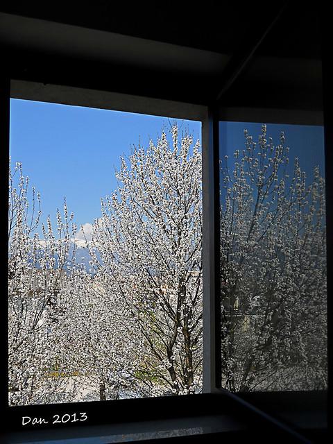 Assaggio di primavera...