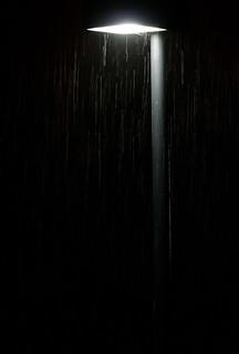 Rainy Light