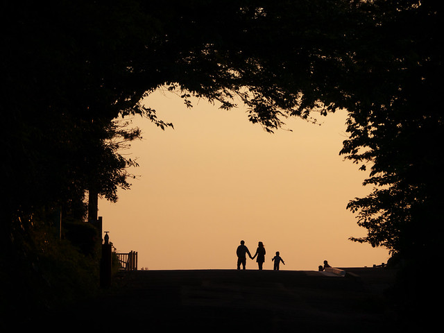 Silhouettes in The Tunnel of Trees