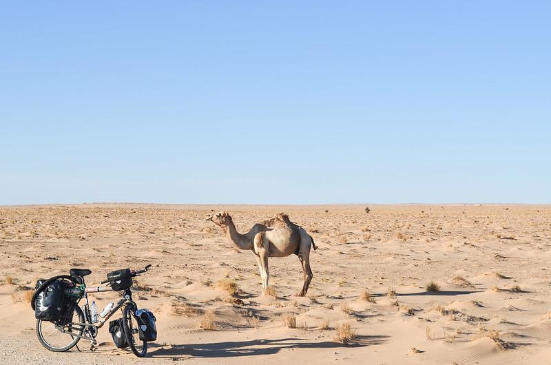 Day144-Bike-130327