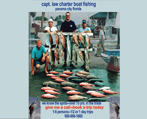 Snappers-groupers-mackerel--all great eating fish