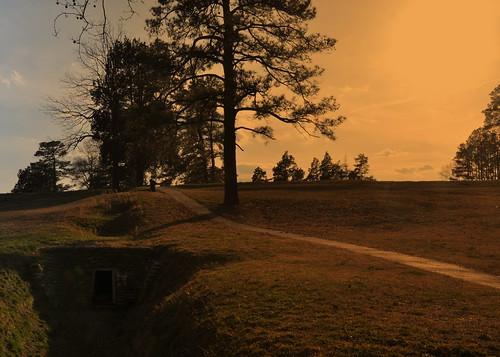 infantry petersburg civilwar crater robertelee 1864