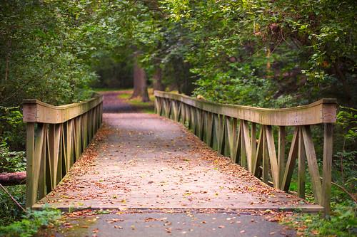 landscape bridge columbia maryland unitedstates