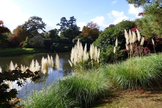 Sheffield Park Garden, National Trust
