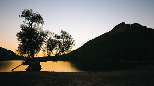 morning sunrise rattlesnakelake tree longexposure clearsky washington pacificnorthwest canoneos5dmarkiii canonef1635mmf4lis bwnd1000x northbend nature landscape johnwestrock wallpaper background